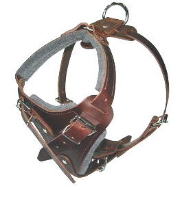 agitation dog training dog harness