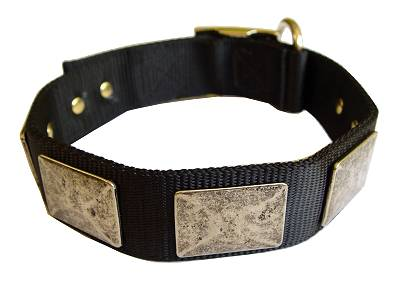 Nylon Dog Collar For Large and Medium Breeds With Vintage Plates for dog training or for dog owners