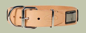 leather dog collar with big plates