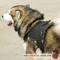 Siberian Husky Nylon Dog Harness for Pulling