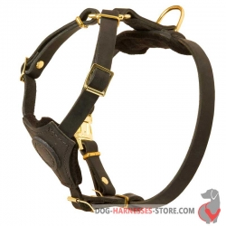 Leather Dog Harness For Puppies And Small Breeds - Walking Harness