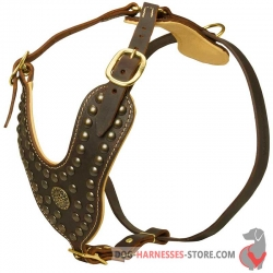 Studded Dog Harness - Royal Padded Leather Dog Harness