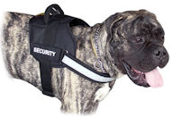 Reflective Nylon Bullmastiff Harness with ID Patches