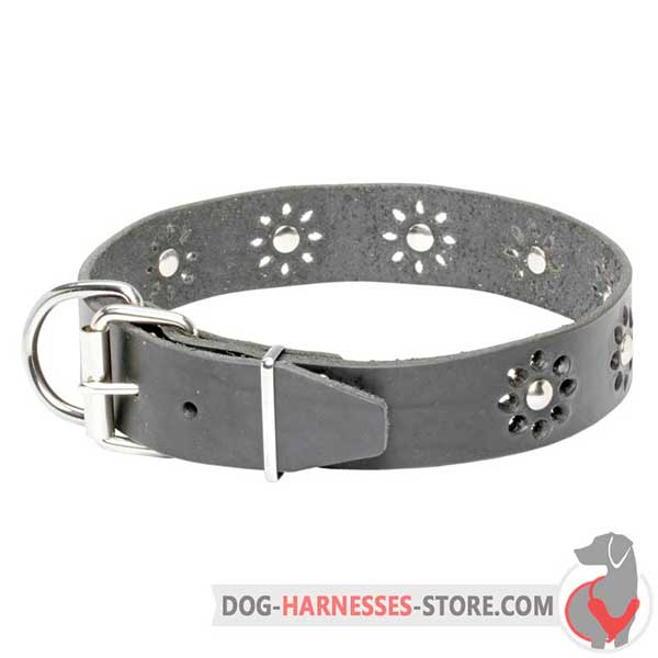 Black Leather Dog Collar Equipped with Solid Hardware Nickel Plated