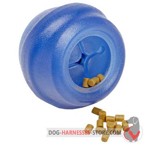 Blue Chewing Dog Ball Big with Small Tasty Treats