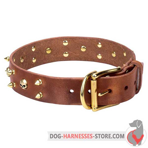 Brown Leather Dog Collar Decorated with Brass Spikes and Skulls