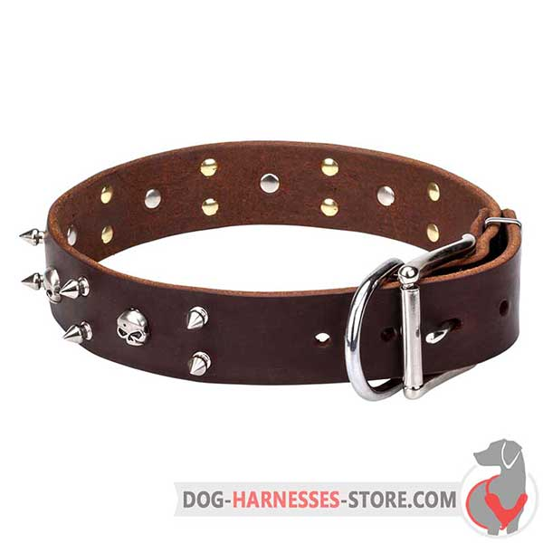 Brown Leather Dog Collar Decorated with Nickel Plated Spikes and Skulls