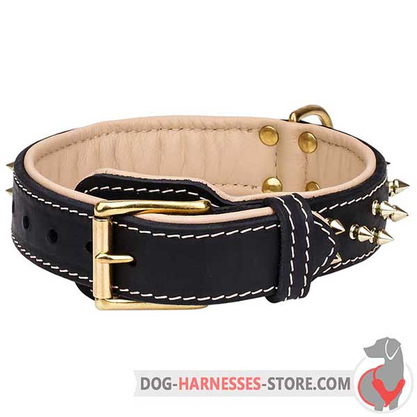 Spiked Buckle Dog Collar with Leather Fur Saver Plate