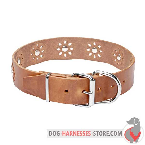 Tan Leather Buckle Collar with Nickel Plated Studs in Flowers