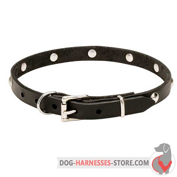 Buckle Leather Dog Collar Decorated with Half-Ball Studs