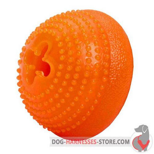 Small Dog Half-Ball for Chewing