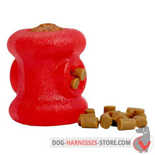 Chewing Rubber Dog Toy Fire Plug for Small Breeds
