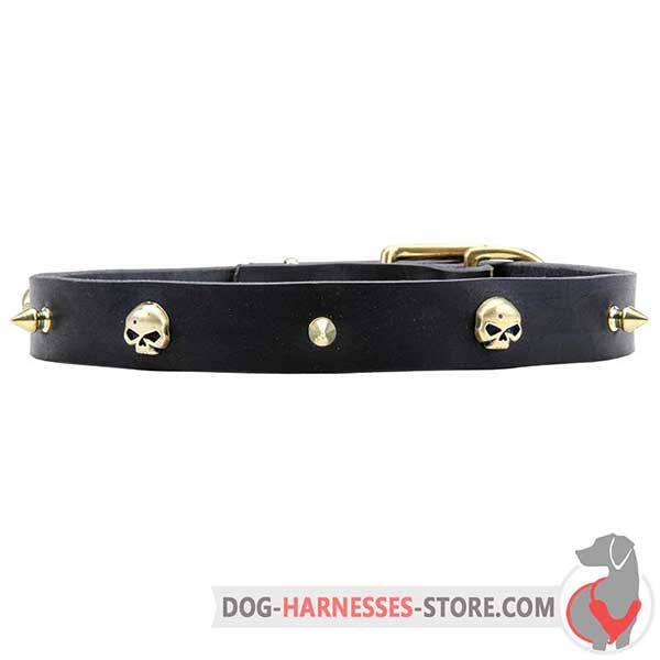 Spiked Leather Dog Collar Additionally Decorated with Brass Skulls