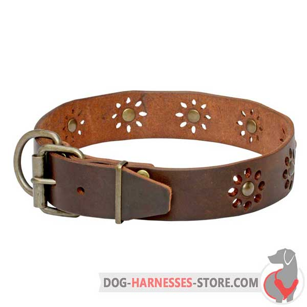 Brown Leather Dog Collar Decorated with Printed Flowers and Brass Studs