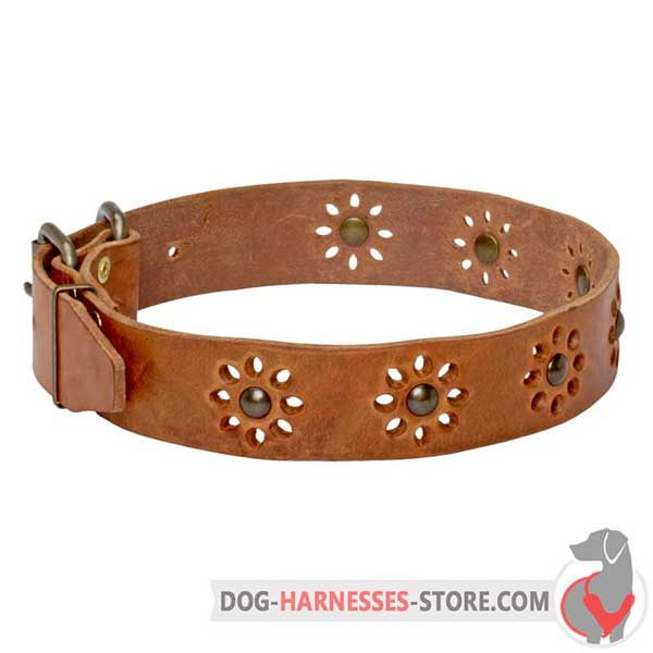 Tan Leather Dog Collar with Brass Studs Flowers