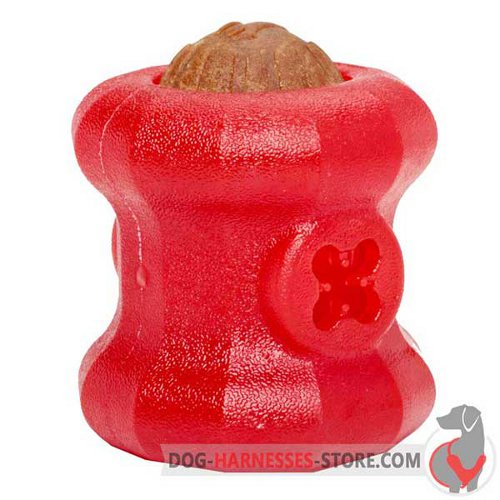 Chewing Rubber Dog Toy Fire Plug for Large Breeds