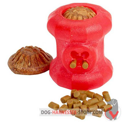 Chewing Rubber Dog Toy Fire Plug for Middle-Sized Breeds
