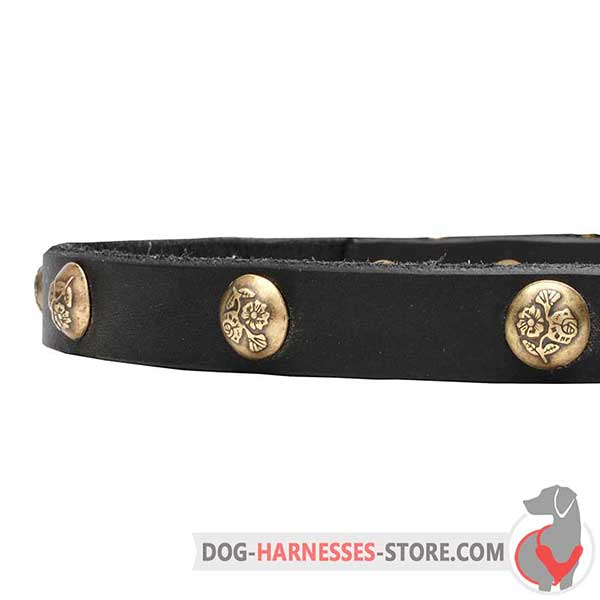 Genuine Leather Dog Collar with Brass Studs