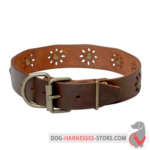 Brown Leather Dog Collar Equipped with Solid Brass Hardware