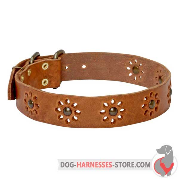 Tan Leather Dog Collar with Printed Flowers and Riveted Brass Hardware