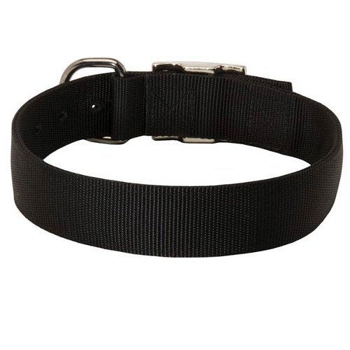 Nylon Buckle Dog Collar for Any Weather Conditions