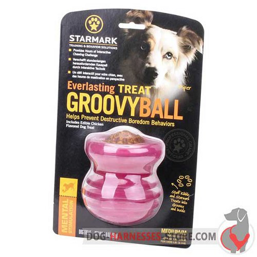 Medium Chewing Dog Toy Pink in Original Packing