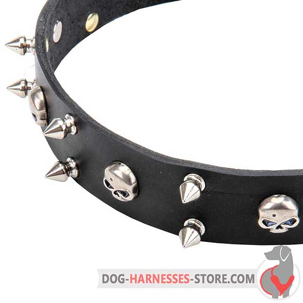 Spiked Leather Dog Collar with Riveted Spikes and Skulls