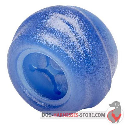 Big Chewing Dog Ball of Blue Rubber