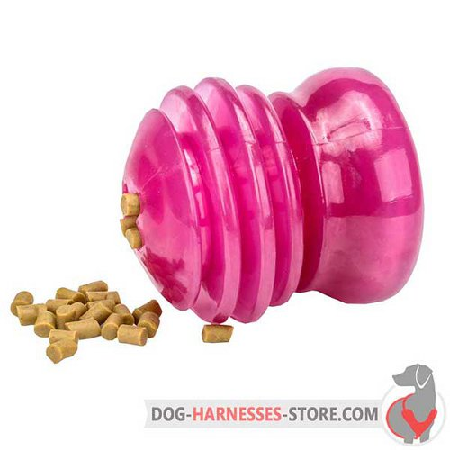 Big Chewing Dog Toy of Pink Rubber