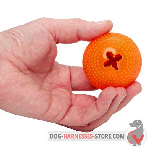 Chewing Dog Semisphere for Small Breeds