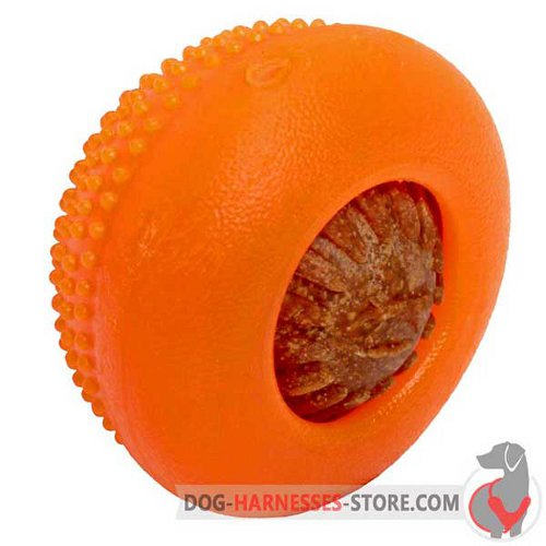 Rubber Dog Half-Ball Medium with Big Treat