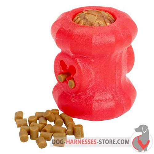 Medium Rubber Dog Toy Fire Plug with Small Treats