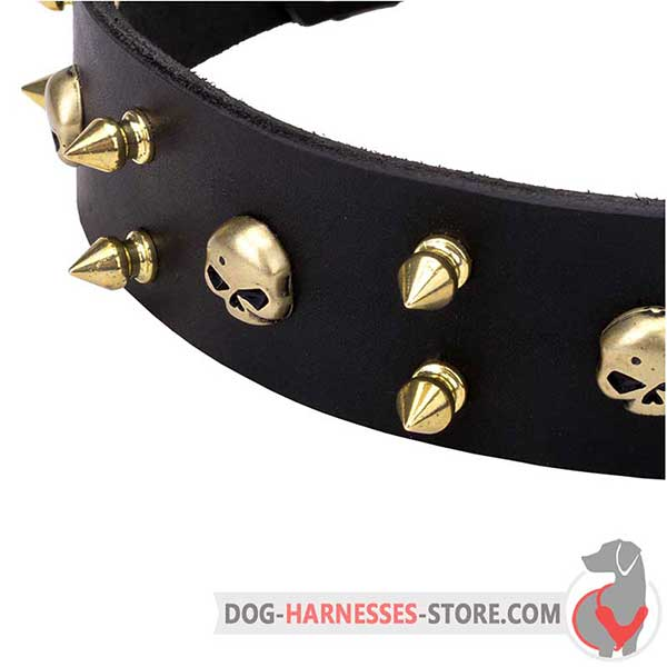 Spiked Leather Dog Collar Black with Brass Hardware and Skulls