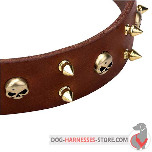 Spiked Leather Dog Collar Brown with Brass Hardware and Skulls