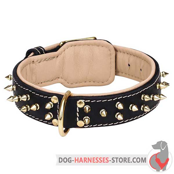 Spiked Leather Dog Collar with Soft Nappa Padding