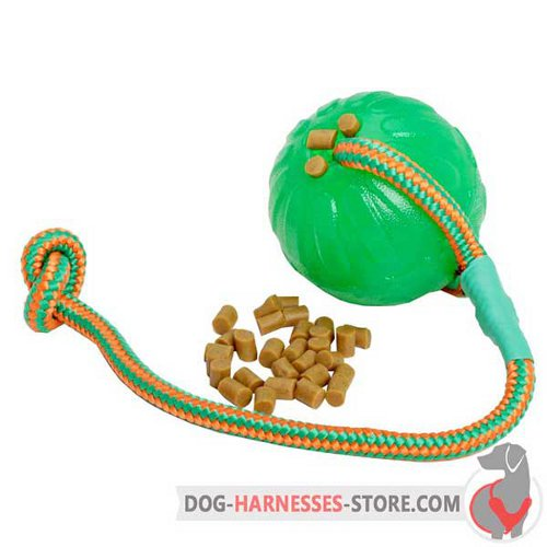Treat Dispenser Dog Ball with Strong String