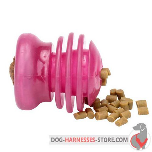 Medium Pink Dog Toy for Small and Big Treats