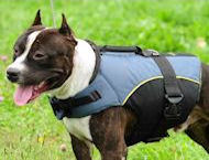 Dog Vest for PITBULL Terrier - PITBULL Dog Coat /Jacket