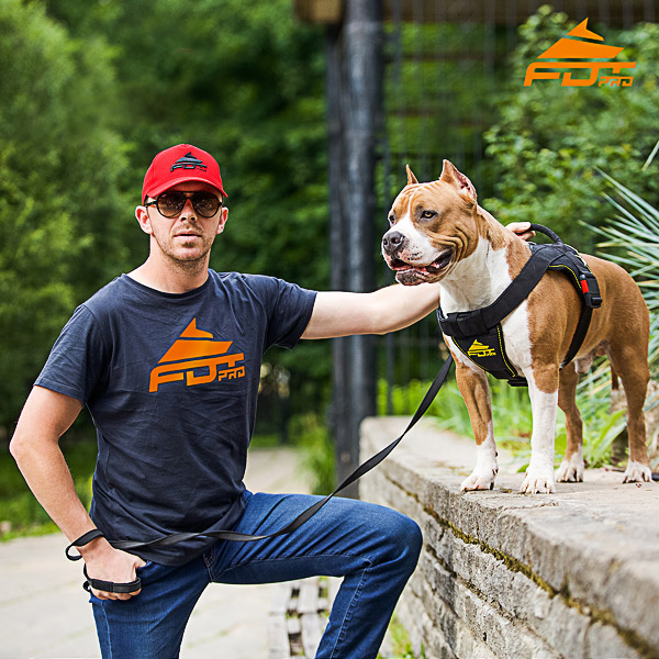 Men T-shirt of Strong Cotton with Pro Logo for Dog Training