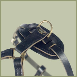 Bloodhound walking Leather Dog Harness-harness for bloodhound